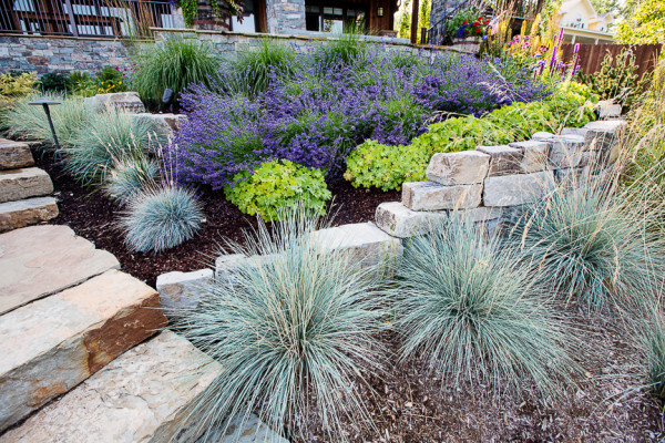 Landscaping with ornamental grasses for Ornamental grass bed design